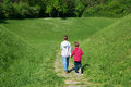 Rear View Of Two Little Boys Holding Hands And Walking Through The Green Field Towards The Forest Royalty Free Stock Photo