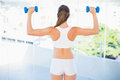 Rear view of woman lifting up dumbbells in bright fitness studio Stock Photography