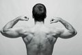 Rear view of a young male bodybuilder on gray backg Royalty Free Stock Images