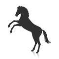 Rearing Grey Horse Illustration in Flat Design