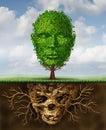 Rebirth And Renewal Royalty Free Stock Photo