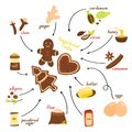 Recipe for making gingerbread cookie in English, vector illustration on a white background