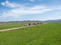 Recreational marathon race through picturesque fields and meadows Royalty Free Stock Photo