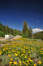 Recreational vehicles on scenic mountain road Stock Images