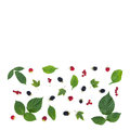 The rectangular composition of a berries and leaves Royalty Free Stock Photo