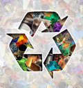 Recycle garbage concept and recycling waste management icon shaped with reusable old paper glass metal and plastic household Stock Image
