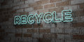 RECYCLE - Glowing Neon Sign on stonework wall - 3D rendered royalty free stock illustration