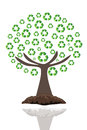 Recycle tree Stock Photos