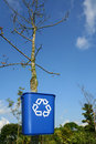 Recycling bin on tree Royalty Free Stock Photos
