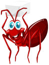 Red ant holding cube of sugar Royalty Free Stock Photo