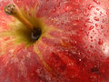 Red apple close up Stock Images