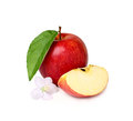 Red apple with a flower and a slice isoleted on white background Royalty Free Stock Image