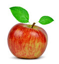 Red apple with green leaf on white background Stock Images