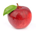 Red apple with leaves Royalty Free Stock Image