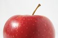 Red apple one juicy hot over a white background Stock Images