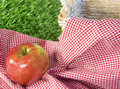 Red apple in a picnic scene Royalty Free Stock Photo