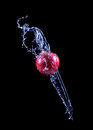 Red apple splashing into water on dark background Royalty Free Stock Photo