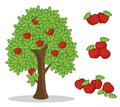 Red apple on tree with white background. isolated doodle hand drawing.