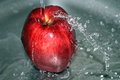 Red apple on water Royalty Free Stock Photo
