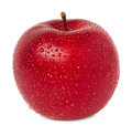 Red apple with water drops isolated Royalty Free Stock Images
