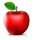 Red apple  for you design Royalty Free Stock Photo