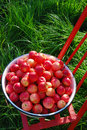 Red apples in basin Royalty Free Stock Photo