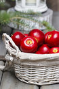 Red apples in basket. Traditional christmas setting. Royalty Free Stock Photo