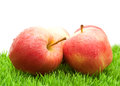 Red Apples on Grass Stock Photo