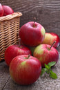 Red apples spill out of the basket Royalty Free Stock Photo