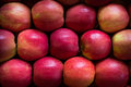 Red apples three rows of Stock Images