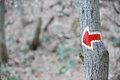 Red arrow hiking sign on a tree marking tourist route Stock Photos