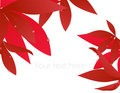 Red autumn leaf branch Royalty Free Stock Photography