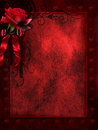 Red background with a rose Royalty Free Stock Photo