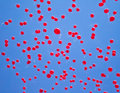 Red balloons fly into the sky at graduation Royalty Free Stock Image