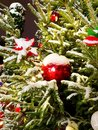 Red balls on a snowy Christmas tree at night Royalty Free Stock Photo