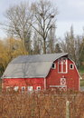 Red barn below two Eagles nests Royalty Free Stock Photos