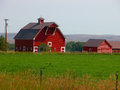 Red barn a is a focal point on any farm Royalty Free Stock Photo