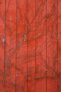 Red Barn Paneling with Vines Stock Image