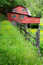 Red barn surrounded by yellow buttercups in spring north carolina Stock Photo