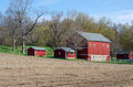 Red barns in spring Royalty Free Stock Photo