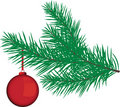 Red Bauble on a Christmas Tree branch Royalty Free Stock Photos