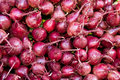 Red beets on display at the farmers market Stock Photography