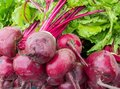 Image : Red Beets  wall close-up