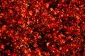 Red Begonia Flower Carpet Royalty Free Stock Photo
