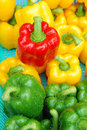 Red bell pepper close up with yellow and green ones in basket Stock Images