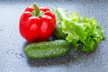 Red bell pepper, cucumbers and lettuce Royalty Free Stock Photo