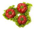 Red bellpeppers on leaves of salad isolated Stock Photos
