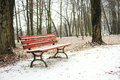 Red bench in the park covered with snow in winter Royalty Free Stock Photo