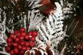 Red berries and branches of a Christmas tree under snow. Royalty Free Stock Photo