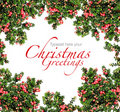Red berries Christmas garland Royalty Free Stock Image